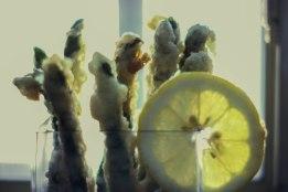 Steam Whistle Tempura